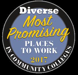 MPPW Community College 2017